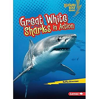 Great White Sharks in Action (Lightning Bolt Books Shark World)
