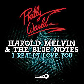 Harold Melvin & Blue Notes - ich wirklich Liebe Sie USA import