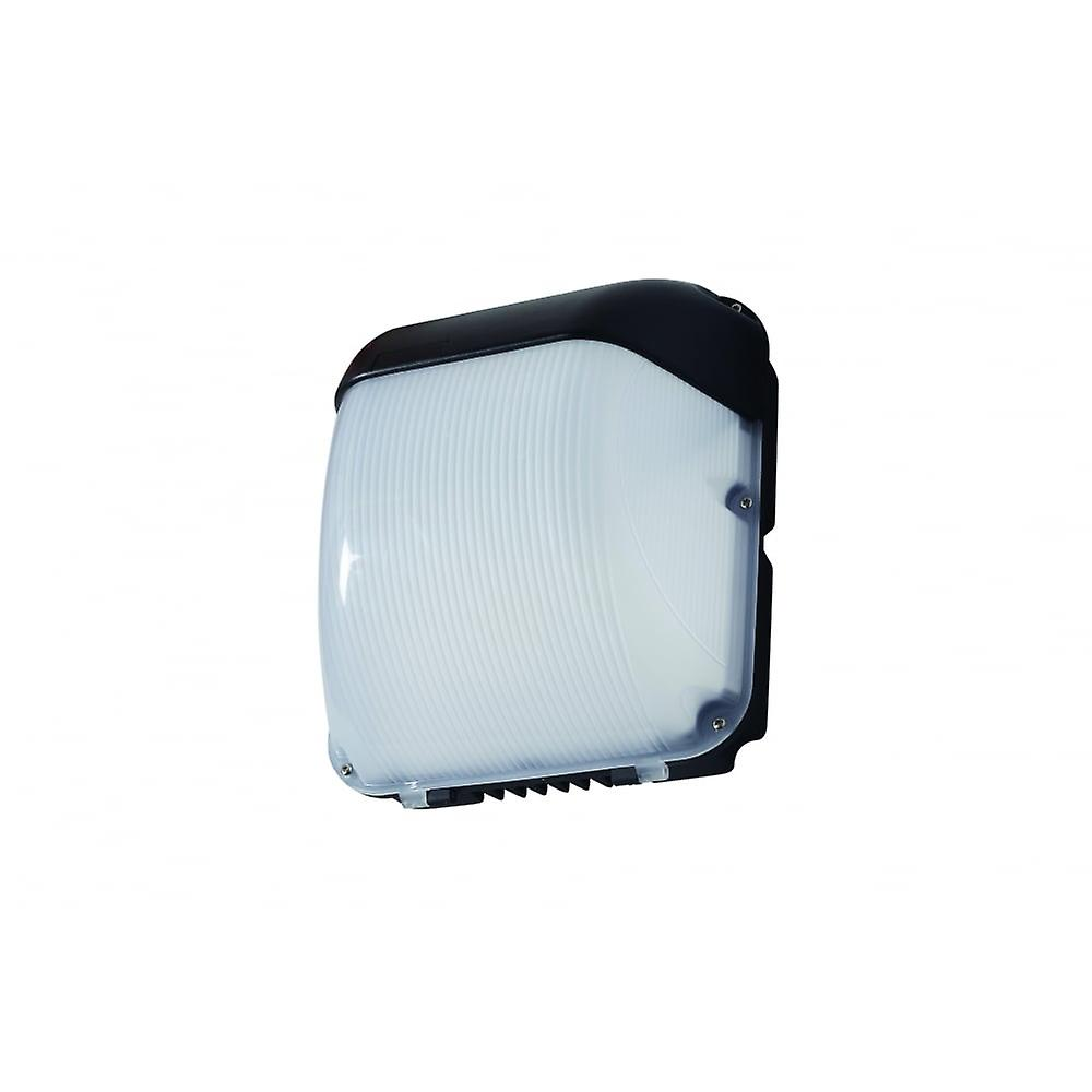 LED Robus Falcon 50W LED Watchhomme mur Pack