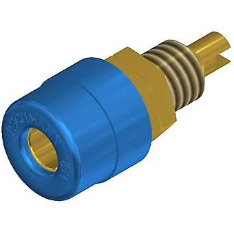 Jack socket Socket, vertical vertical Pin diameter: 4 mm Blue SK