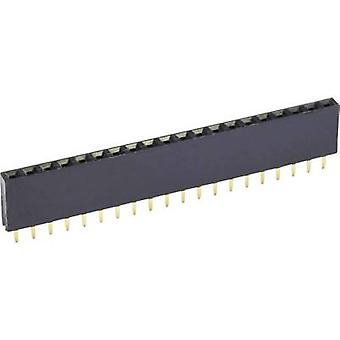 econ connect Receptacles (standard) No. of rows: 1 Pins per row: 22 BL22/1G8 1 pc(s)