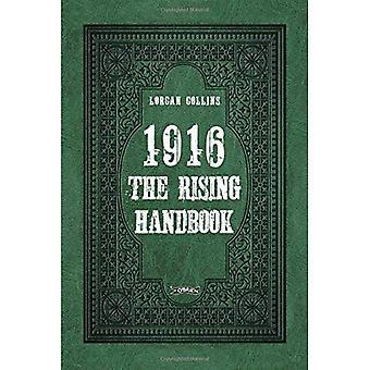 1916: The Rising Handbook (Little Book)