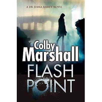 Flash Point: A Psychological Thriller