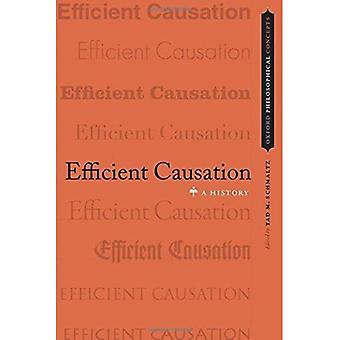 Effiziente Kausalität: Eine Geschichte (OXFORD philosophische Konzepte)