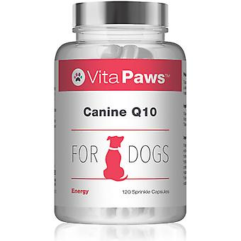Vitapaws/dog-supplements/canine-q10