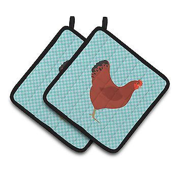 New Hampshire wyboru niebieski czerwony kurczaka para łapki