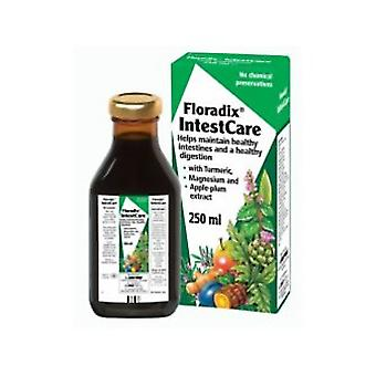 Floradix, IntestCare, 250ml