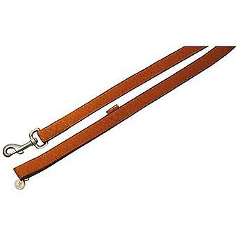 Nayeco MacLeather dog leash brown S (Dogs , Collars, Leads and Harnesses , Leads)