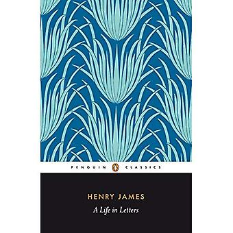 Henry James: uma vida em letras