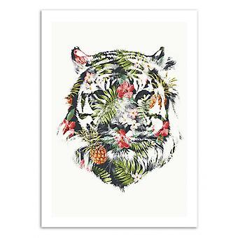 Kunst-Poster - Tropischer Tiger - Robert Farkas 50 x 70 cm