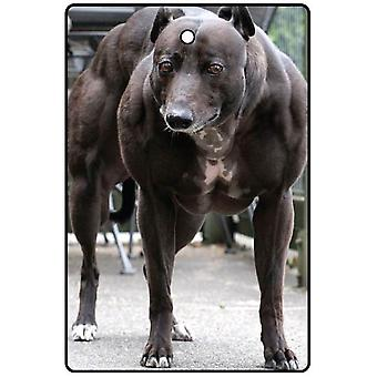 Hund på steroider bil luftfräschare