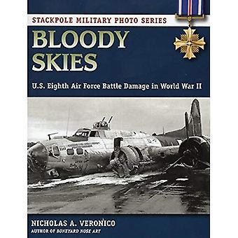Maldito céu: E.U. oitava força aérea danos de batalha na segunda guerra mundial (foto Stackpole militar)