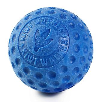 Kiwi Walker Lets Play! Foam Ball Dog Toy