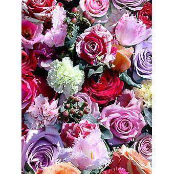 Rose Floral Wallpaper rot und rosa Muriva J97010