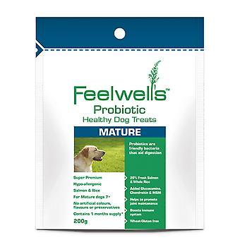 Feelwells probiotiske sund behandler Super Premium modne laks & ris 200g (pakke med 6)