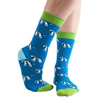 Patch Dog women's soft bamboo crew socks in teal | By Doris & Dude