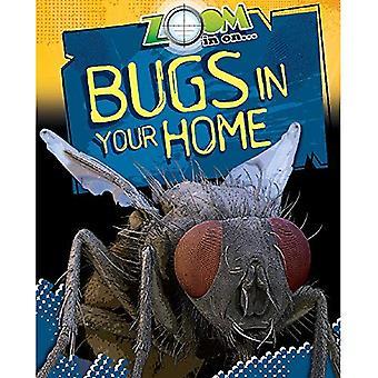 Inzoomen op: insecten in uw huis