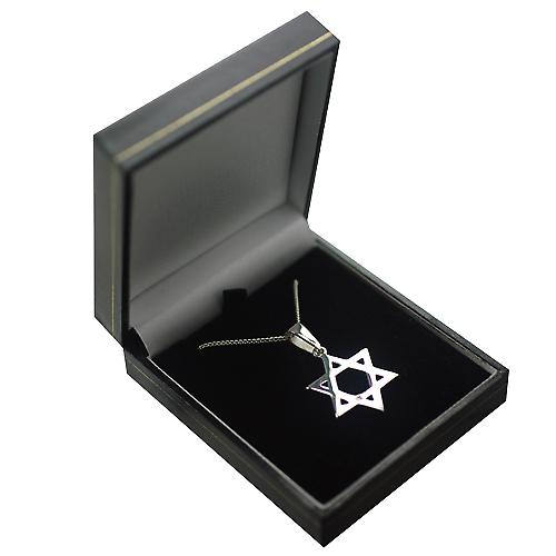 Silver 27x27mm plain Star of David Pendant on a bail with a curb Chain 24 inches