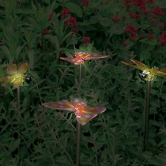Solar Butterfly and Dragonfly Border and Pathway Lights