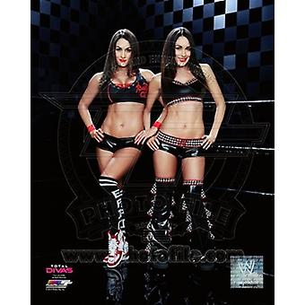 The Bella Twins 2014 Posed Sports Photo (8 x 10)
