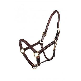 QHP Dark brown leather Bridle Cob