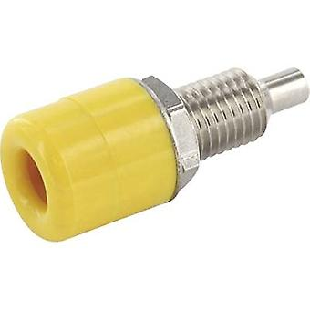 Jack socket Socket, vertical vertical Pin diameter: 4 mm Yellow econ connect TB4GE 1 pc(s)