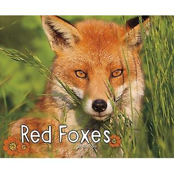 Red Foxes by G. G. Lake - 9781474721868 Book