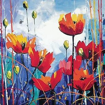 Daniel Campbell print - Poppies in Blue