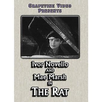 Rat 1926 [DVD] USA importeren