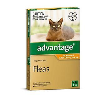 Advantage Orange 1 Pack Small Cat 0-4kg