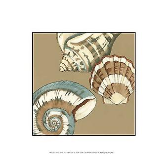 Small Shell Trio on Khaki II (P) Poster Print by Megan Meagher (10 x 13)