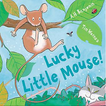 Lucky Little Mouse! by A. H. Benjamin - Tim Warnes - 9781848952119 Bo