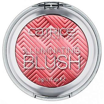 Catrice Cosmetics Illuminante Blush Catrice (Donna , Make up , Viso , Fard)