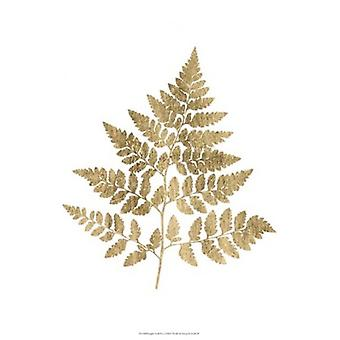 Graphic Gold Fern I Poster Print by Studio W (13 x 19)