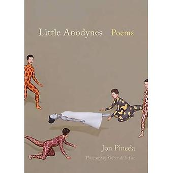 Little Anodynes: Poems (Palmetto Poetry Series)