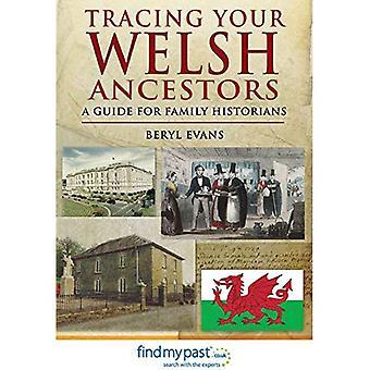 Verfolgen Ihre walisische Vorfahren: Ein Leitfaden für Familienforschern