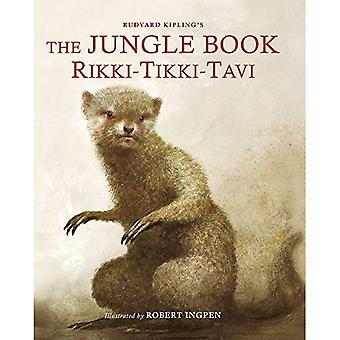 The Jungle Book: Rikki Tikki Tavi (Picture Hardback) (Abridged Classics)