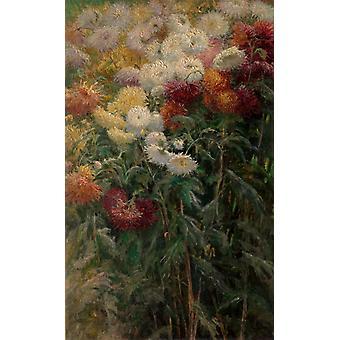 O crisântemo no jardim, Gustave Caillebotte, 60x37cm
