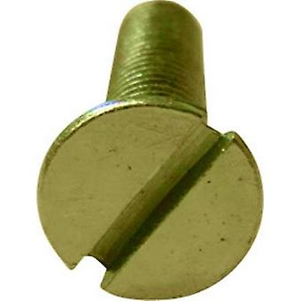 TOOLCRAFT M2*6 D963-4.8:A2K 194819 Countersunk screws M2 6 mm Slot DIN 963 Steel zinc plated 100 pc(s)