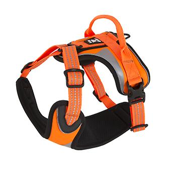 Hurtta Harness Dazzle Orange (Dogs , Walking Accessories , Harnesses)