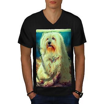 Havanese cane uomo animale domestico BlackV-Neck t-shirt | Wellcoda