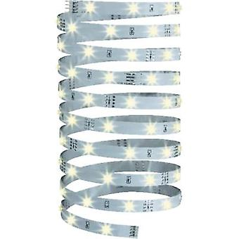 LED strip + plug 12 V 500 cm Warm white Paulmann YourLED Eco 70255