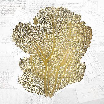 Печать плаката Золотой коралл 4, Аллен Кимберли