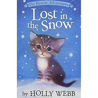 Lost in the Snow (Pet Rescue Adventures)