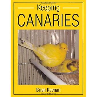 Kanaren zu halten
