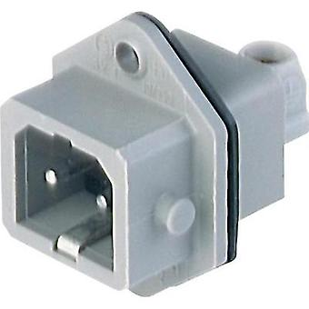 Mains connector Plug, vertical mount Total number of pins: 2 + PE 16 A Grey Belden STASEI 2 1 pc(s)