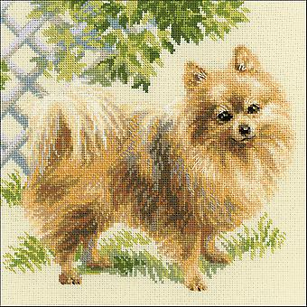 Pomeranian Counted Cross Stitch Kit-9.75