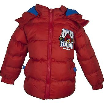 Angry Birds Boys Hooded Winter Jacket / Coat