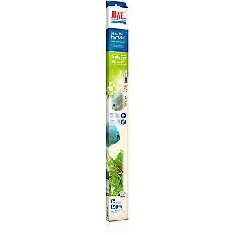 Juwel Tubo T5 Nature 28W (Fish , Lighting , Florescent Tubes)