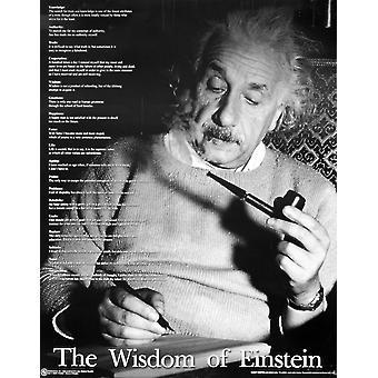 Albert Einstein Poster The Wisdom of Einstein Zitate Einsteins Kleinformat